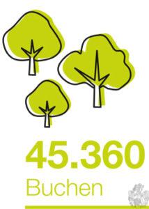 soviel wie 45.360 Buchen Bäume
